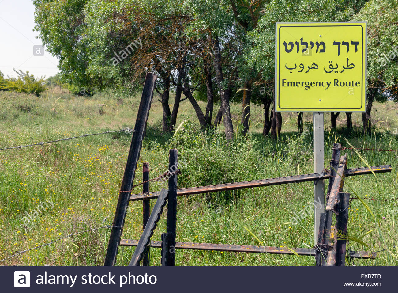 'Emergency Route' warning sign written in Hebrew, Arabic, and English language. The 'Route' is blocked by metal bars and barbed wire - Stock Image