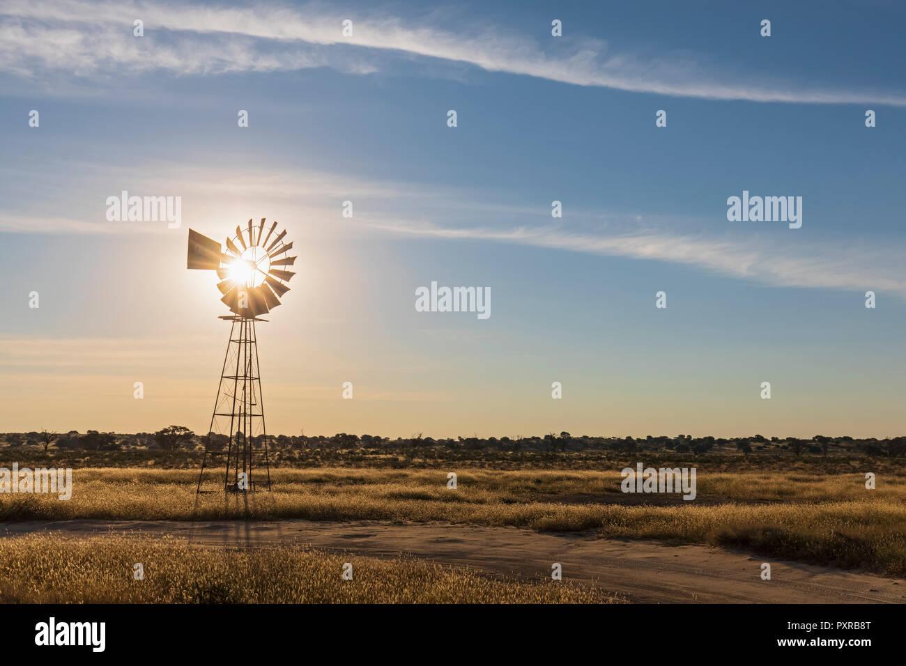 Africa, Botswana, Kgalagadi Transfrontier Park, Kalahari, wind wheel at waterhole Lanklaas - Stock Image