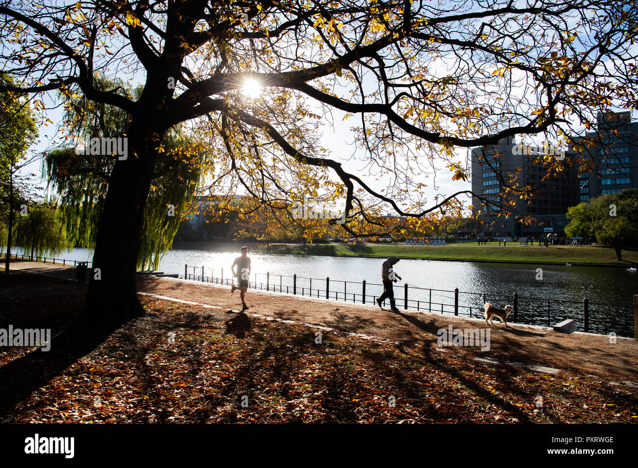 Berlin, Germany. 24th Oct, 2018. People are walking along the Landwehr Canal. Credit: Arne Immanuel Bänsch/dpa/Alamy Live News - Stock Image