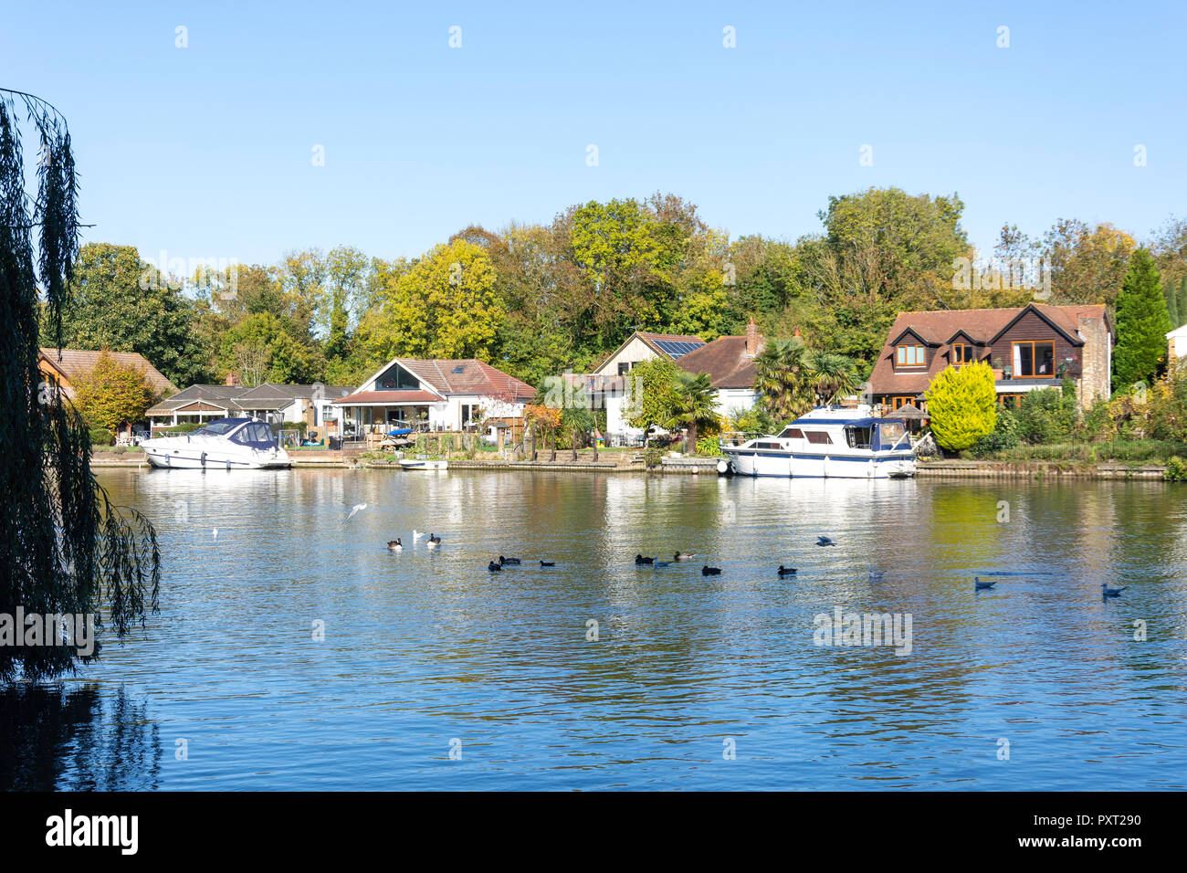 Riverside houses on bank of River Thames, Runnymede, Surrey, England, United Kingdom Stock Photo