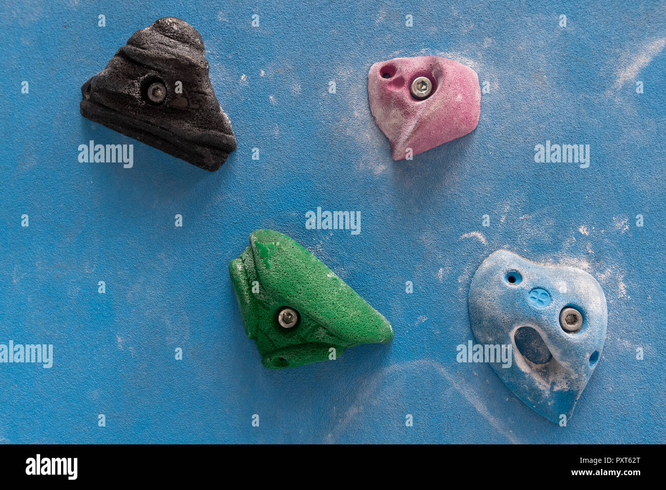 Coloured via ferrules or climbing grips on blue wall, Germany - Stock Image