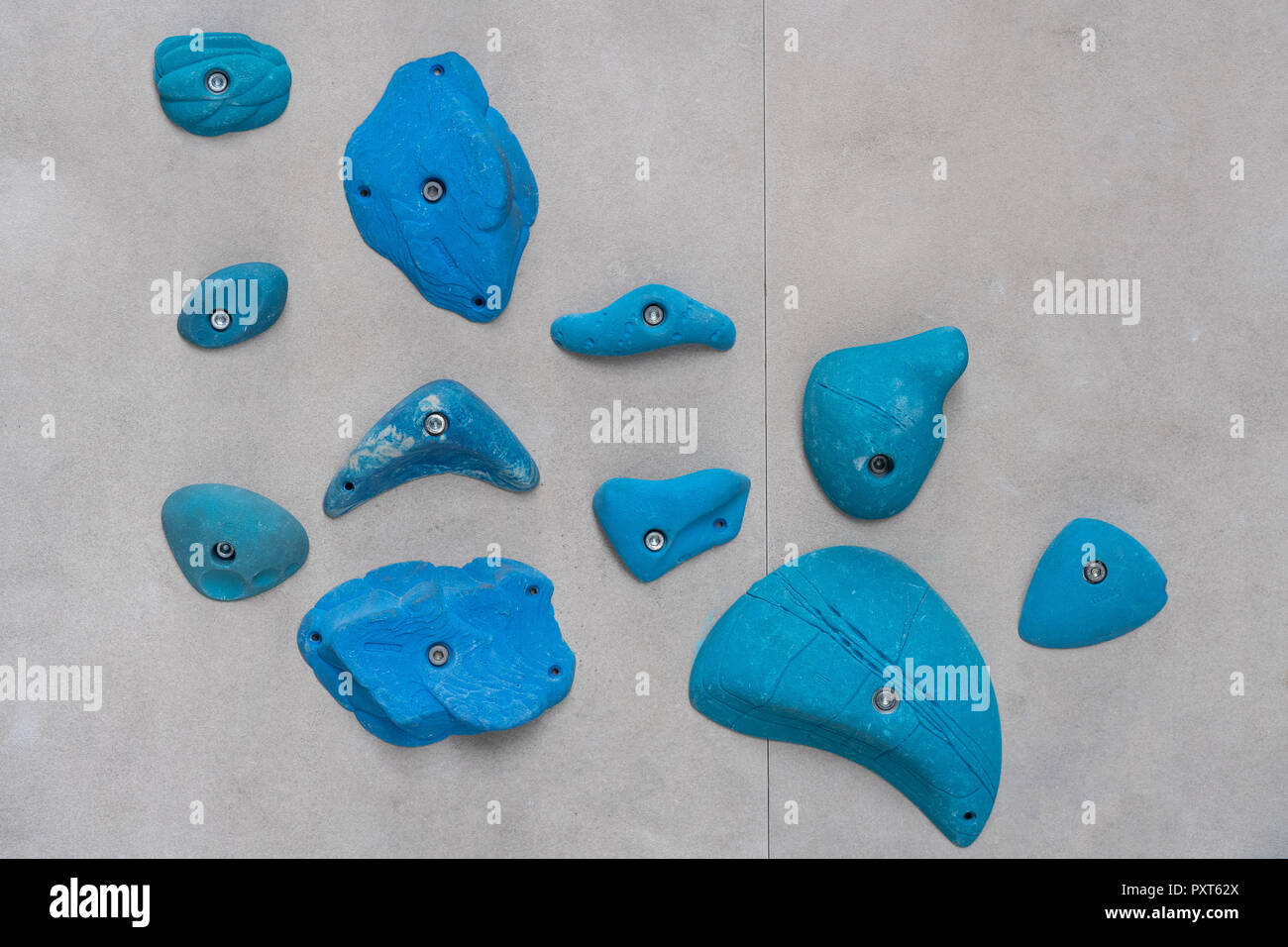 Blue via ferrules or climbing grips on grey wall, Germany - Stock Image