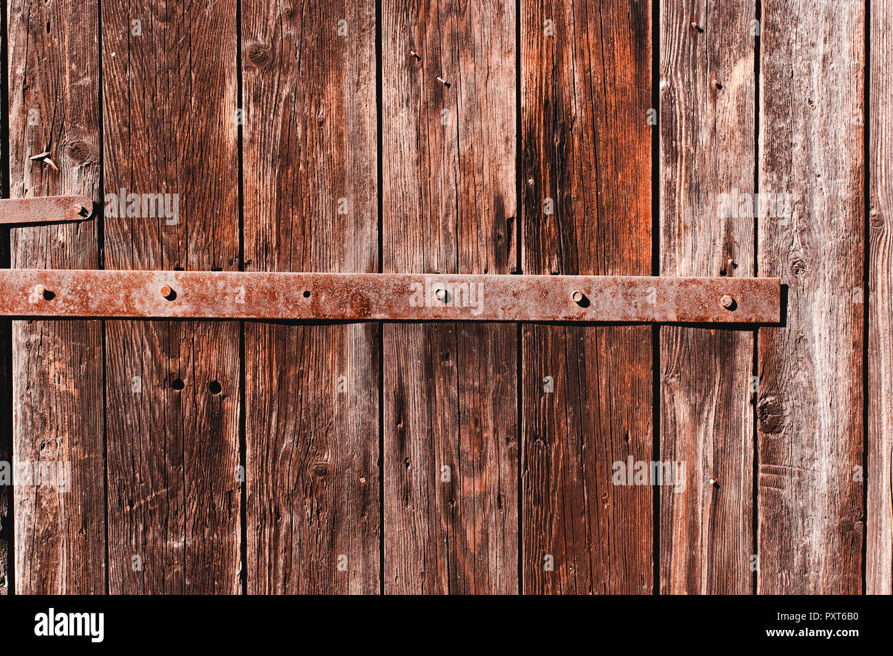 Old antique  wooden groung the background with rusty iron nails and a staple,rustic wall or table - Stock Image