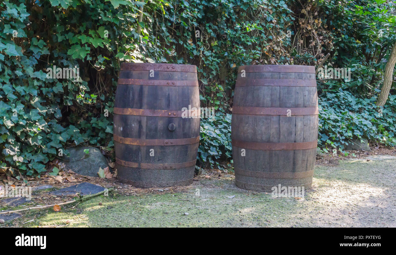 Old Weathered And Rusty Wooden Barrels In A Garden Very Decorative