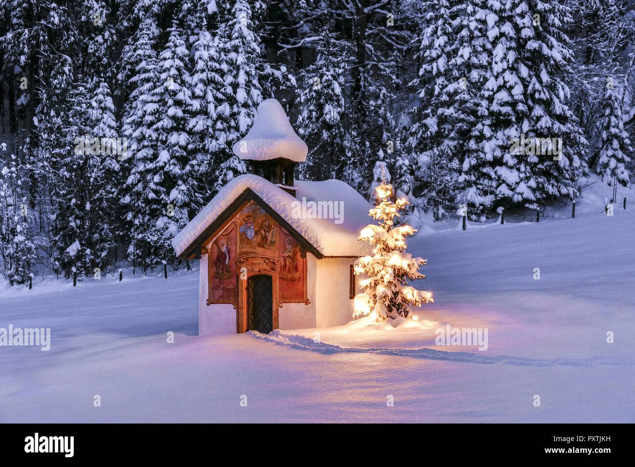 beleuchteter christbaum vor einer kapelle im winter bayern oberbayern deutschland europa