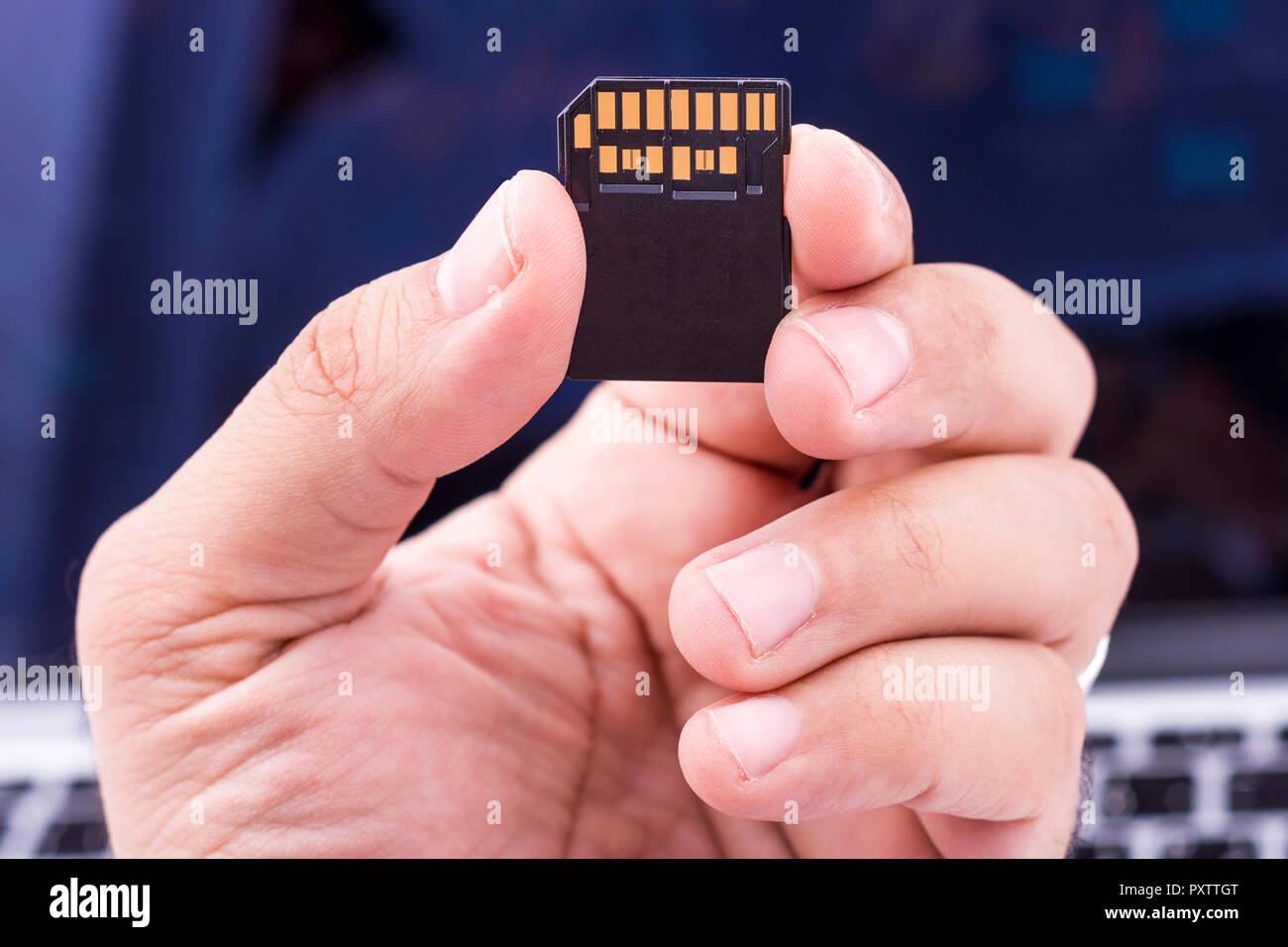 Fast SD memory card holding by fingers Stock Photo