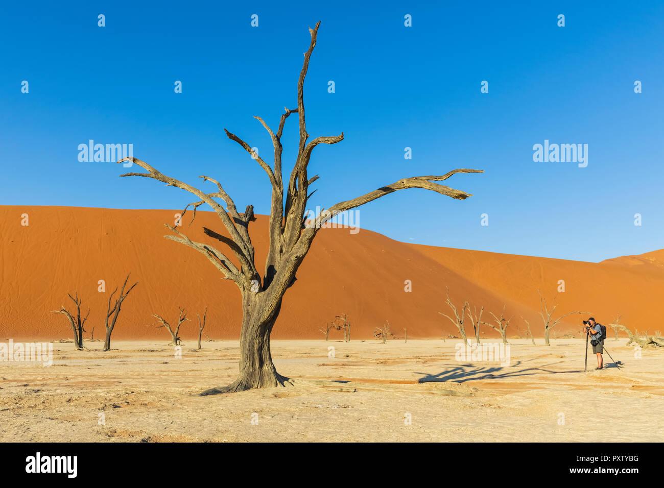 Africa, Namibia, Namib desert, Naukluft National Park, - Stock Image