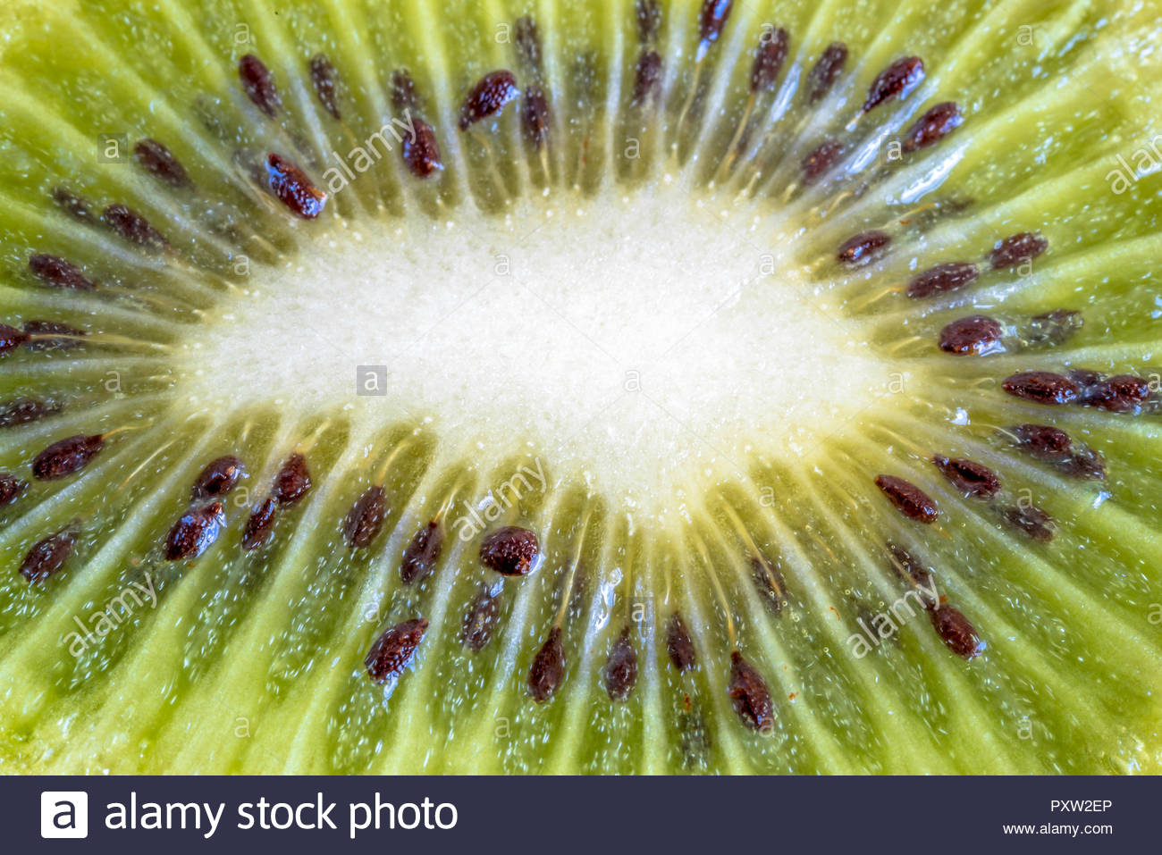 Close up of cross section of kiwi fruit  Healthy food