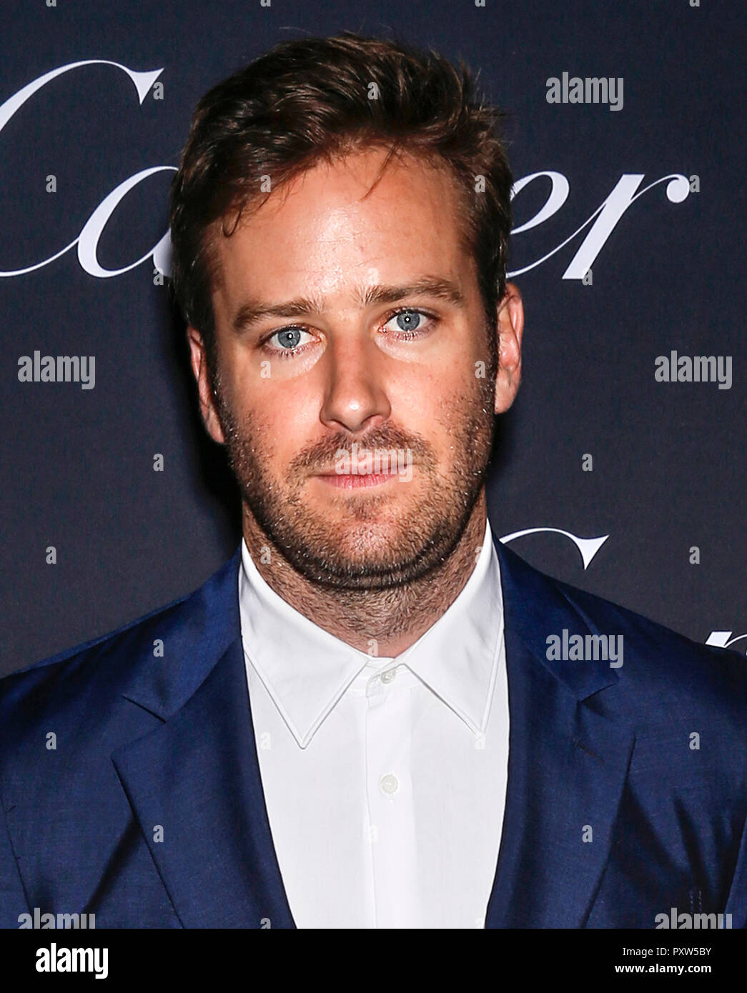 Armie Hammer Stock Photos & Armie Hammer Stock Images - Alamy