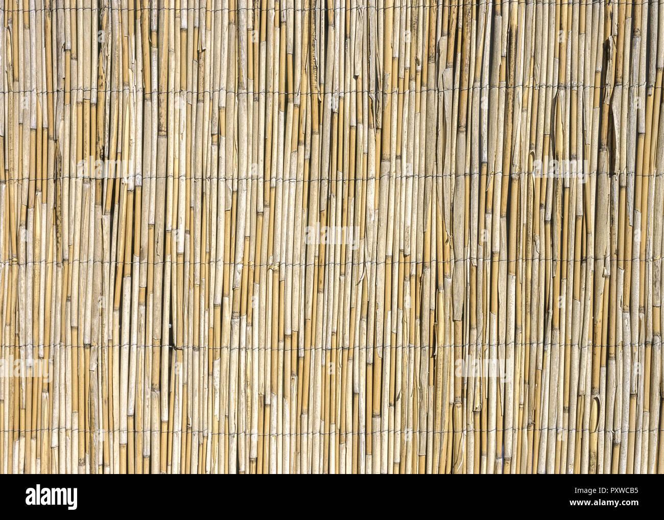 Sichtschutzzaun Aus Bambus Stock Photo Alamy
