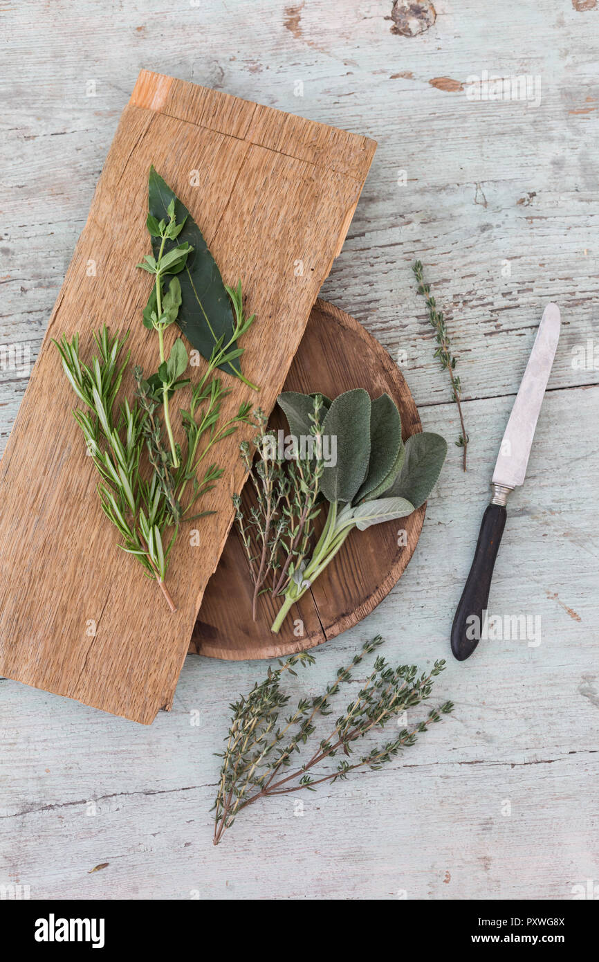 Fresh Provencal herbs, knife and   wooden boards - Stock Image