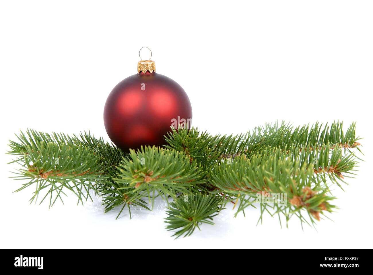 Christmas Green And Red.Red Christmas Ball On A Branch Of Green Christmas Tree Stock