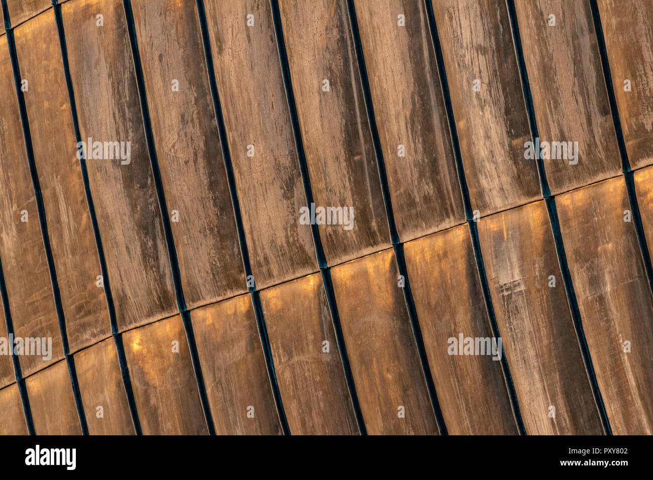 Details of rusty steel structural sheets, used for external roofing surface in organic architectural design. Surface with zinc traces. - Stock Image