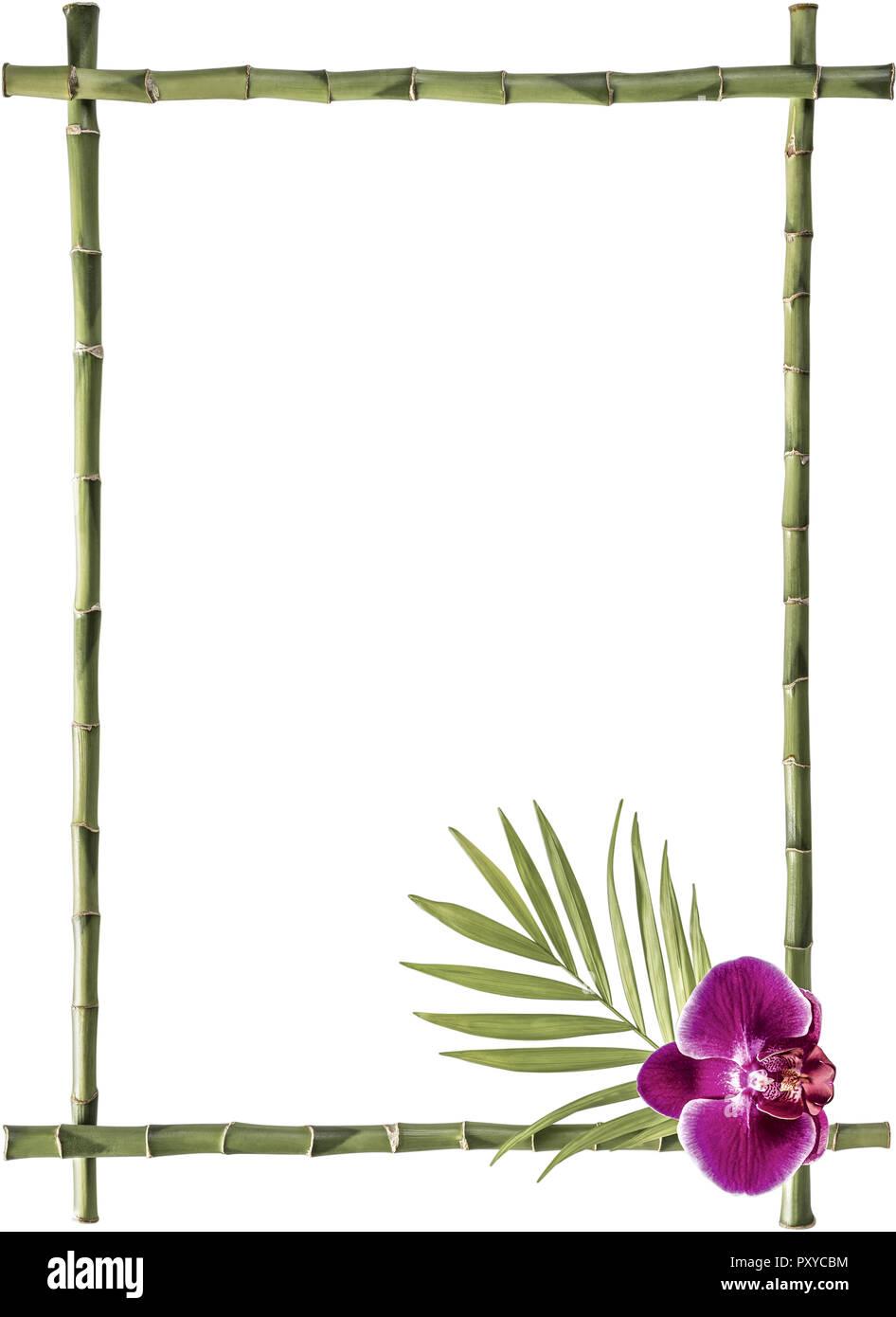 Rahmen aus Bambusstangen und einer Orchideenbluete Stock Photo