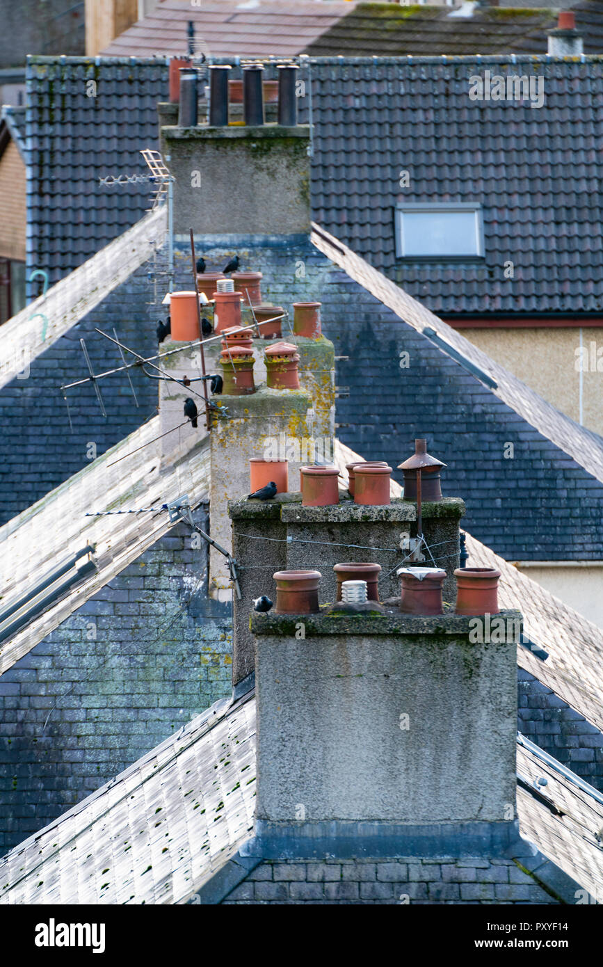Row of domestic chimney pots on houses in the UK - Stock Image