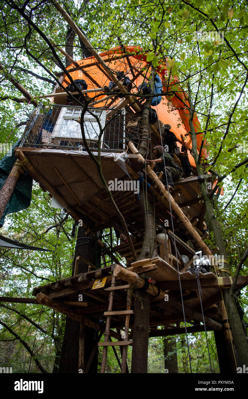 Kerpen, Germany. 24th Oct, 2018. 24 October 2018, Germany, Kerpen: A three-storey tree house is built in the Hambach forest. Credit: Christophe Gateau/dpa/Alamy Live News - Stock Image