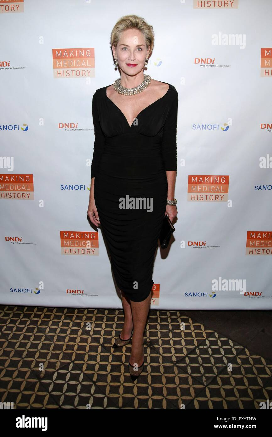 Sharon Stone 2013 Oscars