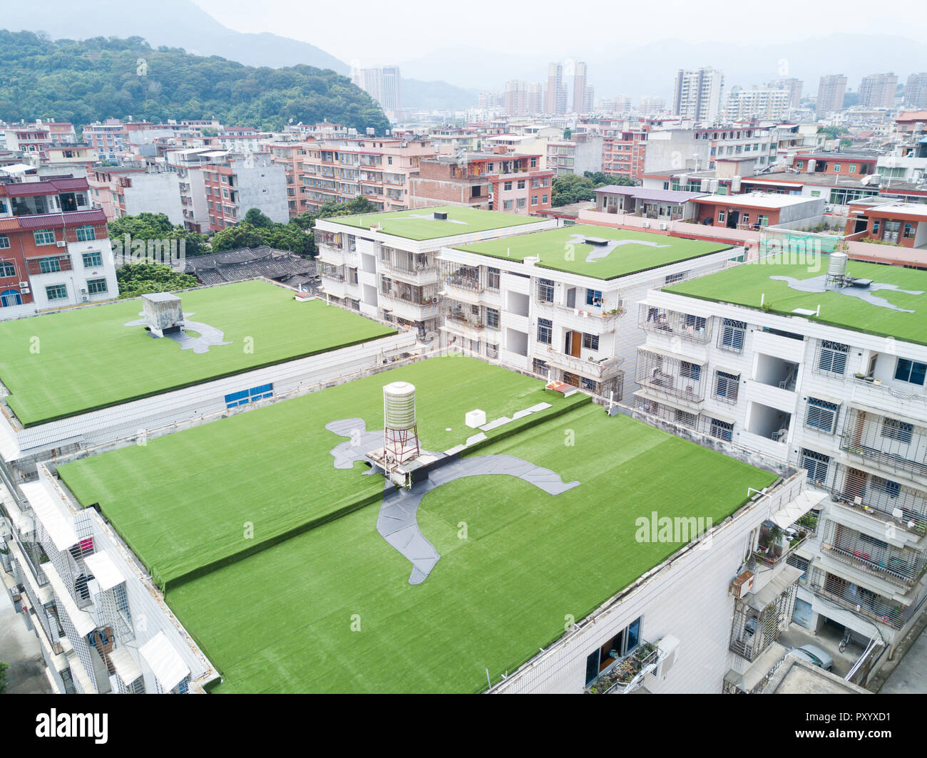 Yongchun. 24th Oct, 2018. Aerial photo taken on Oct. 24, 2018 shows Kung Fu posture shaped turfs on buidlings' roofs in Yongchun County, southeast China's Fujian Province. Credit: Song Weiwei/Xinhua/Alamy Live News - Stock Image