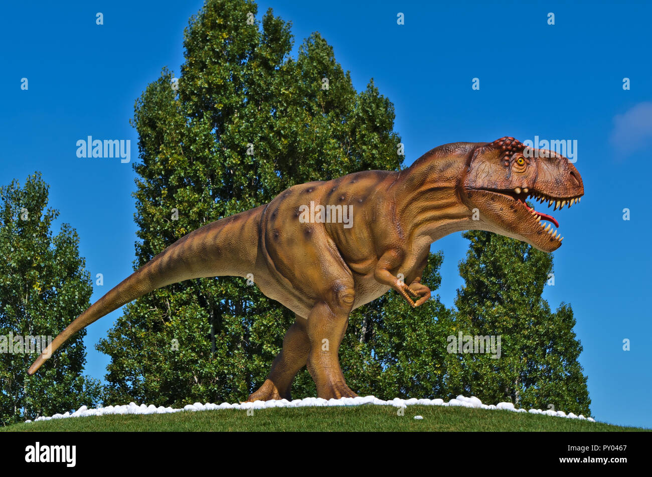 T-Rex from the Dino-Park in Lourinha, Portugal - Stock Image
