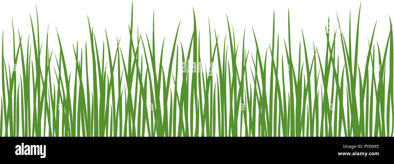 Grass detailed silhouettes. Isolated on white. Herbs garden. For web, wallpaper, decoration, textile, prints banners wrapping packing Stock Vector