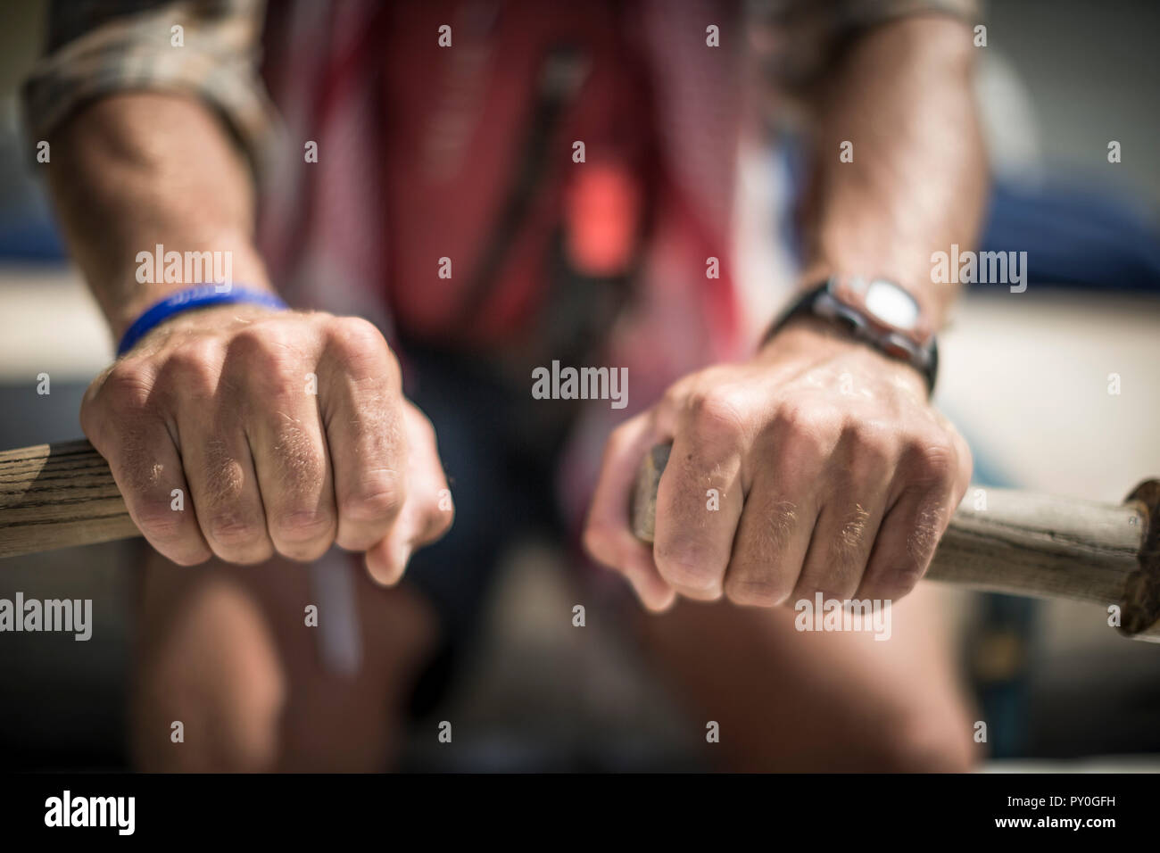 Close-up of mans hands gripping oars of inflatable raft, Desolation/Gray Canyon section, Utah, USA - Stock Image