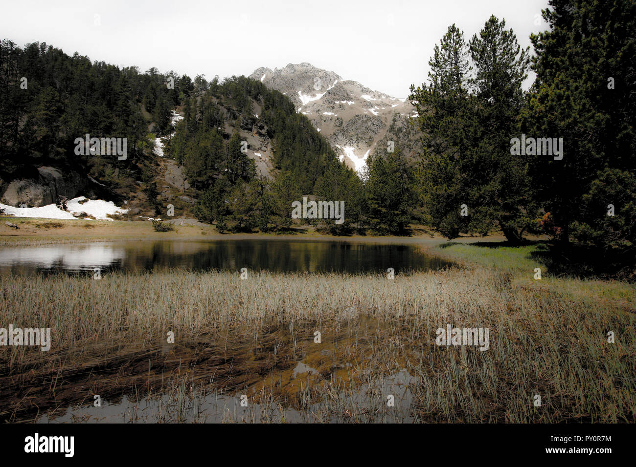 Banhs de Tredos. Pyrenees. Lleida, Catalonia. Spain - Stock Image