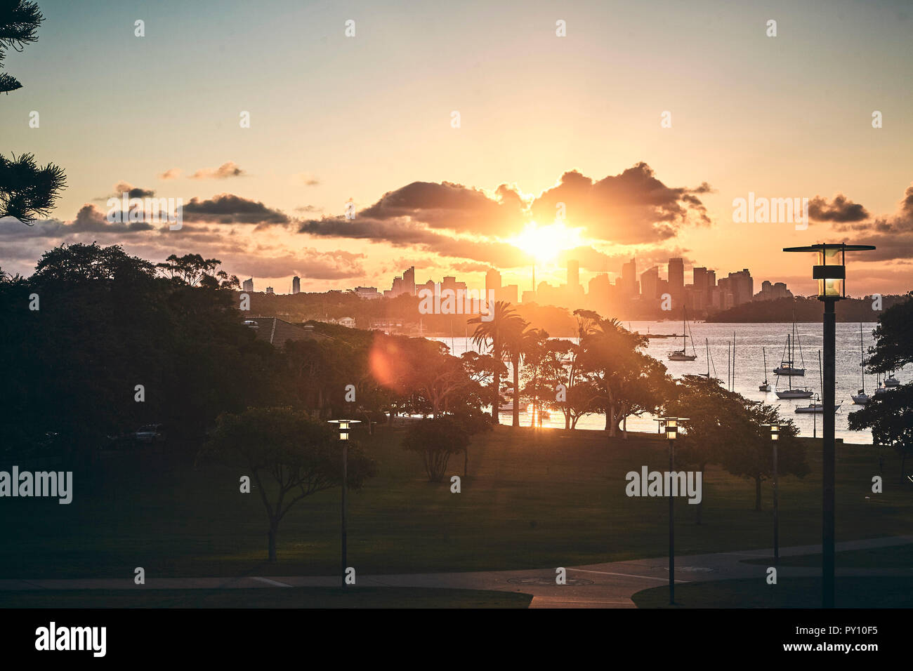 City skyline at sunset viewed from Robertson Park, Sydney, New South Wales, Australia - Stock Image