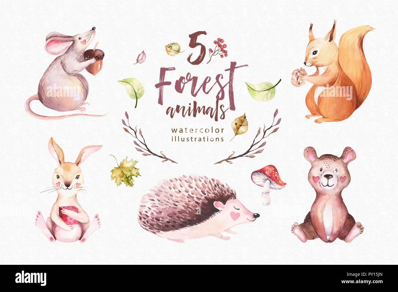 Cute Baby Animal Nursery Mouse Rabbit And Bear Isolated