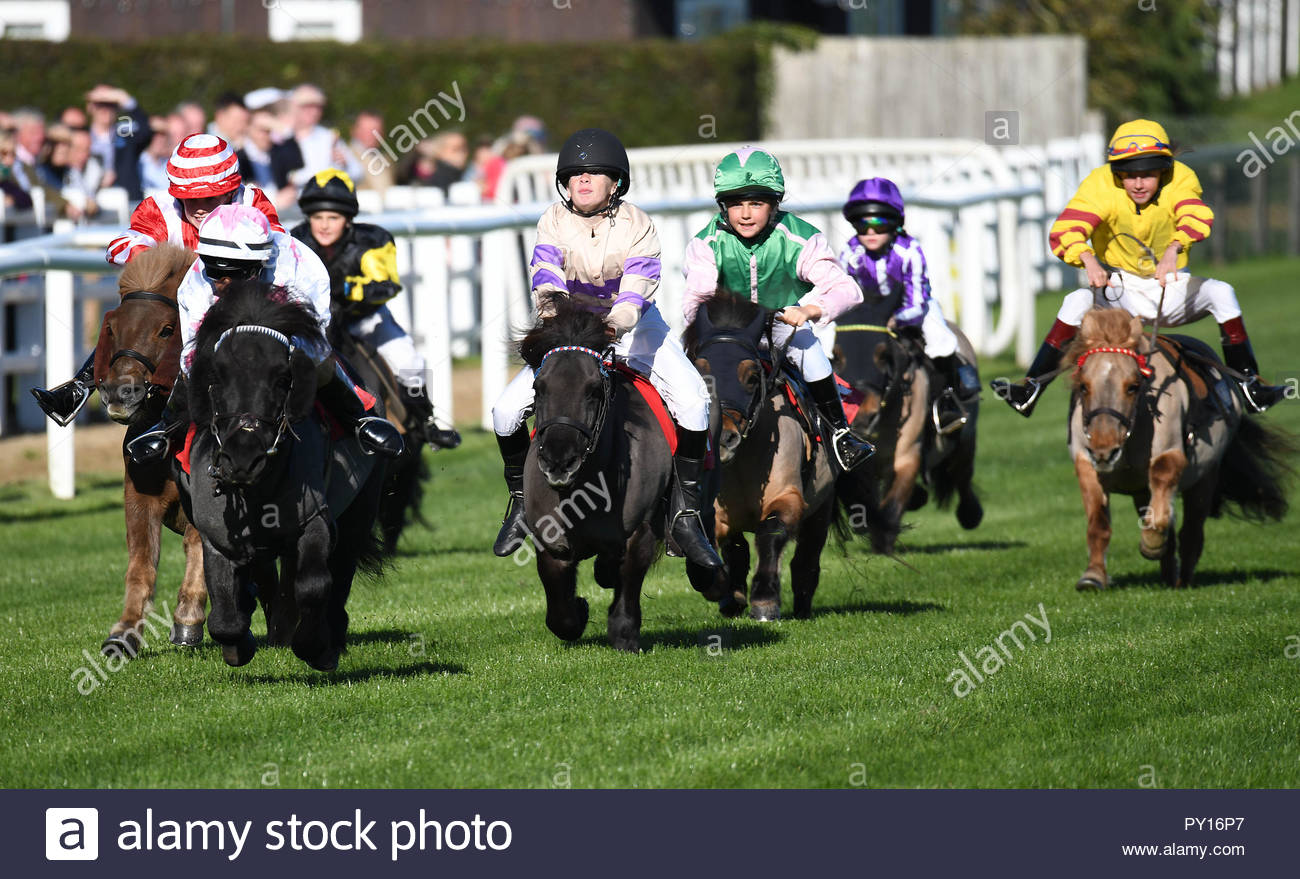 Junior jockeys racing in the 'Moorcroft Racehorse Welfare Centre Shetland Pony Gold Cup' at Plumpton Racecourse, near Lewes East Sussex - Stock Image