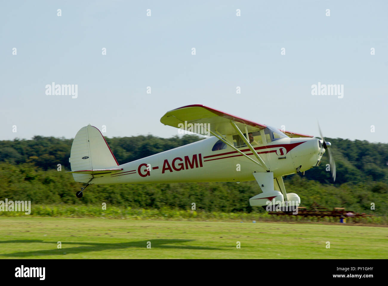 Luscombe 8E Silvaire Deluxe plane landing at Elmsett Airfield, Suffolk countryside grass airstrip. G-AGMI. High wing monoplane. Classic light aircraft - Stock Image
