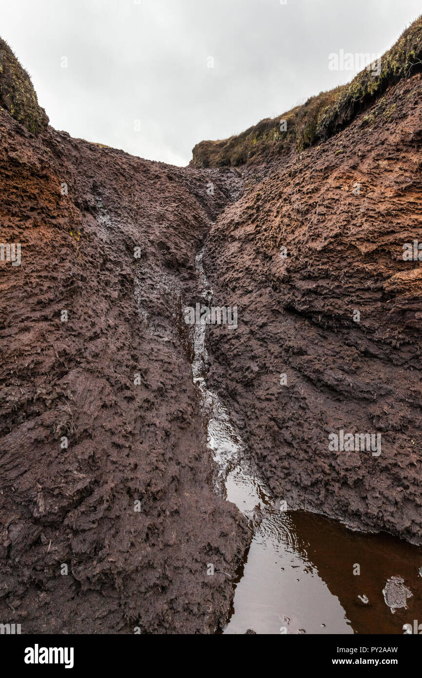 Moor erosion. Close up of water running down the side of a muddy peat hag into a gully or grough on moorland at Kinder Scout, Derbyshire, England, UK - Stock Image