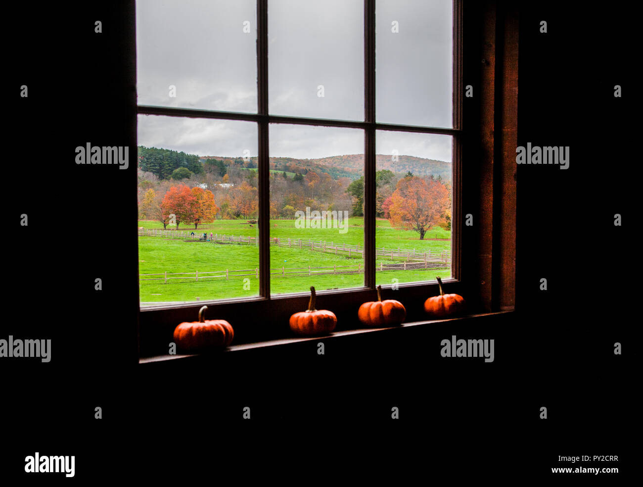 View from a Barn Window, Billings Farm and Museum, Woodstock, Vermont, USA, October  2018 New England fall, into garden Stock Photo