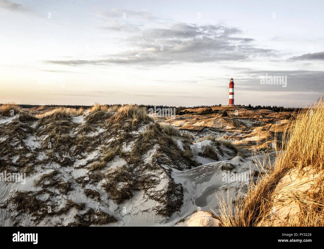 Duenen und Leuchtturm auf Amrum, Schleswig-Holstein, BRD - Stock Image