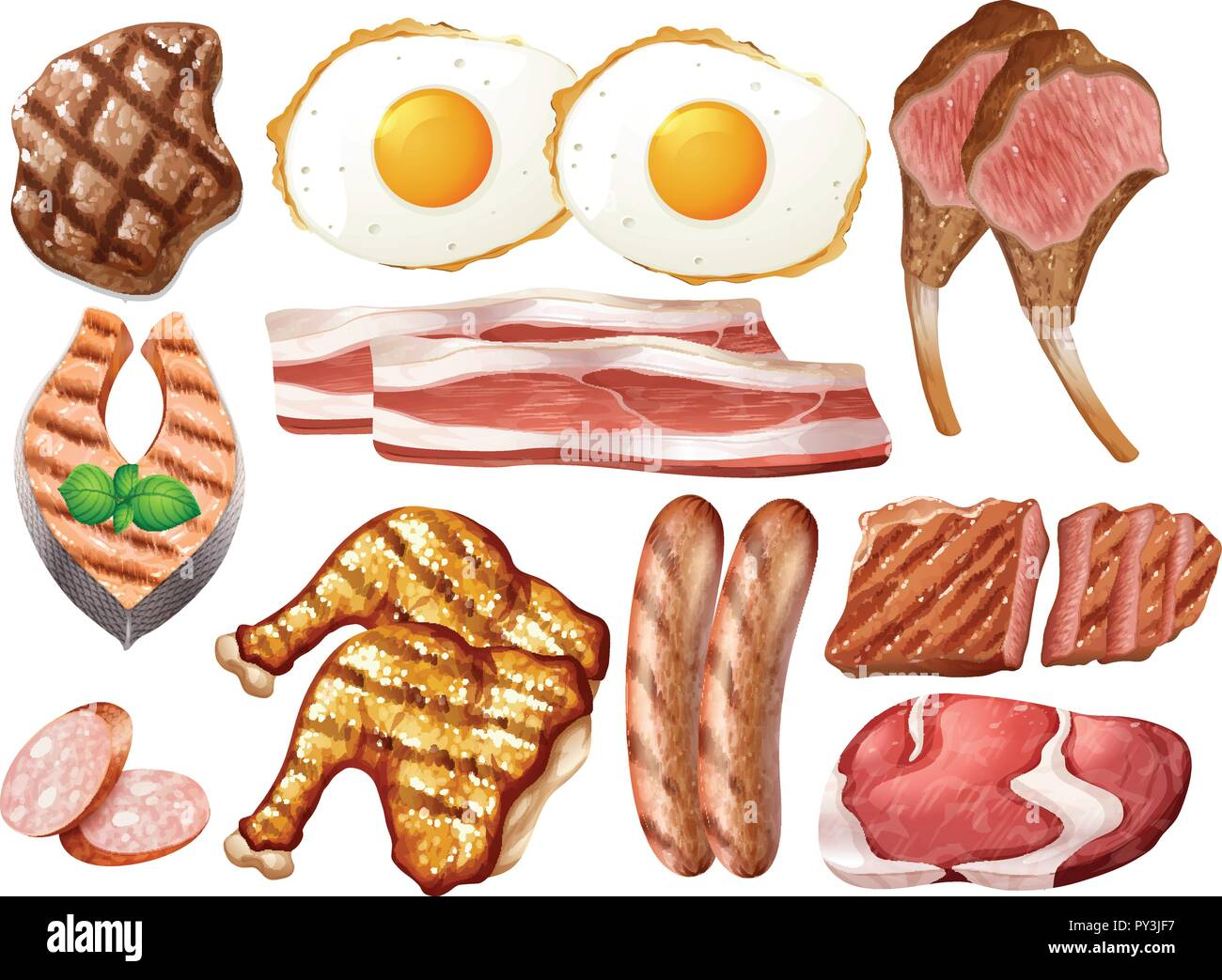 Set of different poultry and meats illustration - Stock Vector