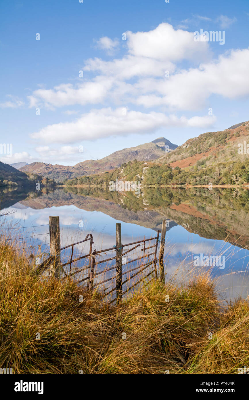 Reflections on Llyn Gwynant in the Nant Gwynant Valley, Snowdonia National Park, North Wales, UK Stock Photo