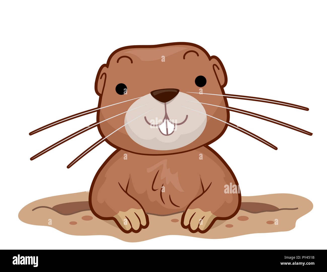 Smiling Gopher Stock Photos & Smiling Gopher Stock Images