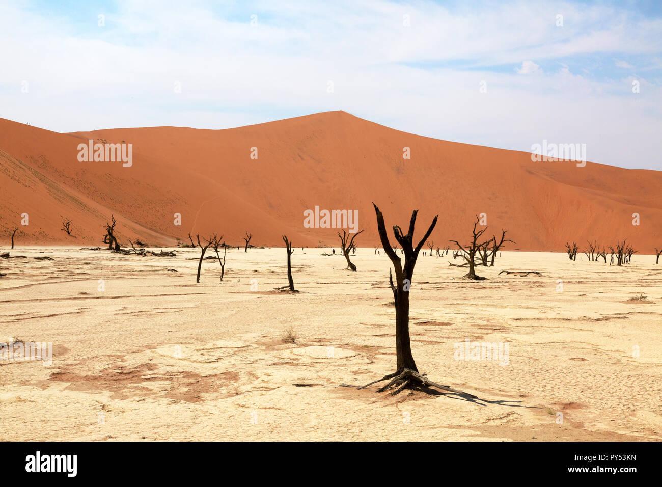 Deadvlei Namibia - desert landscape with trees dead for 8000 years in the dunes of the Namib Desert, Namib Naukluft National Park, Namibia Stock Photo