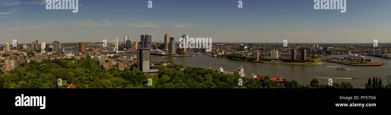 netherlands, rotterdam, the cityscape and skyline of rotterdam with