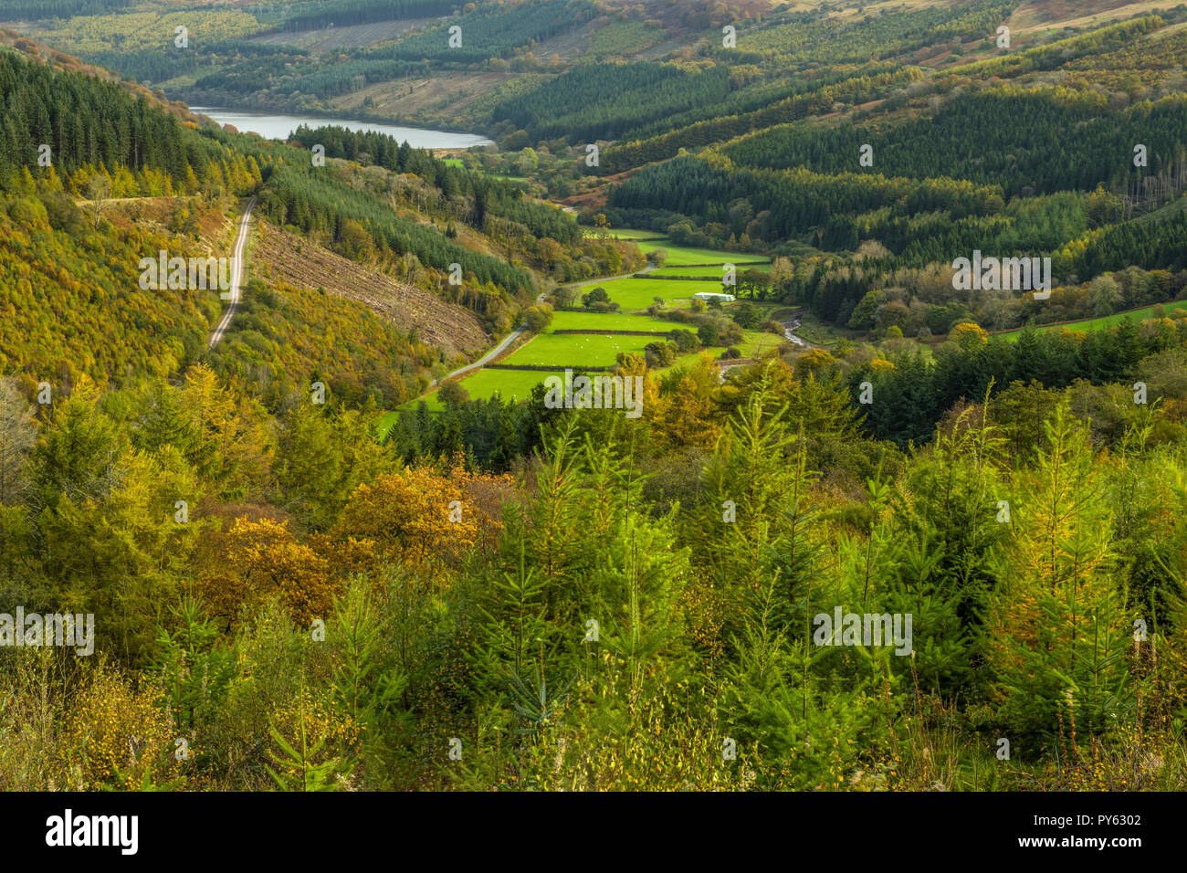 Looking down the Talybont Valley as far as the Talybont Reservoir, Brecon Beacons National Park - Stock Image