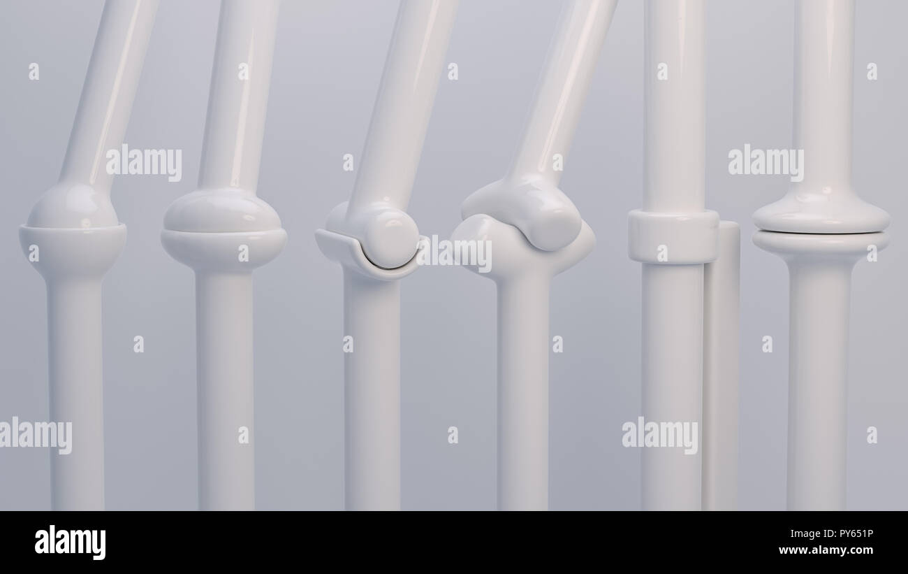 Joint types on the human body- 3D Rendering - Stock Image