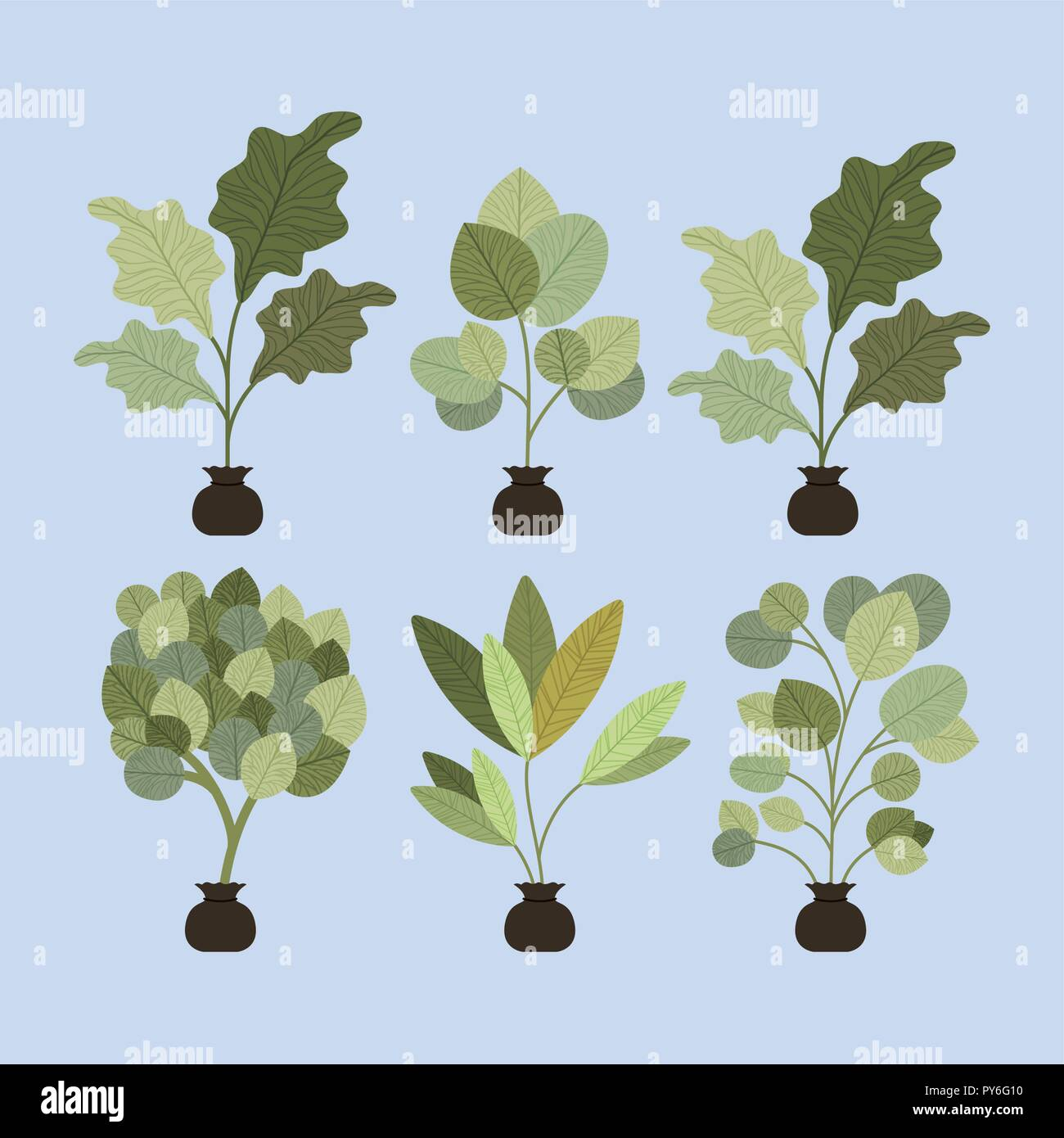set trees plants cultivated in sacks - Stock Vector