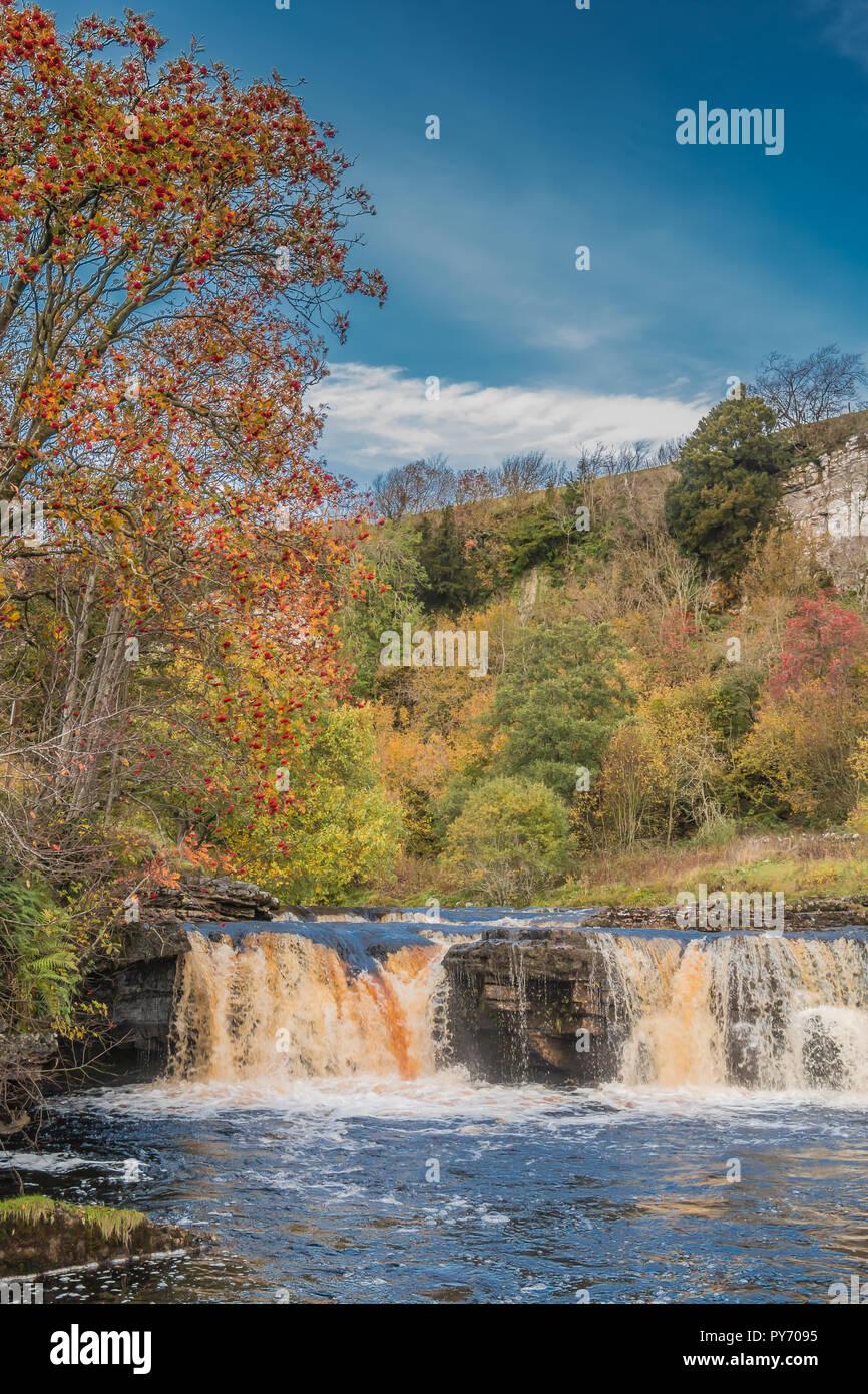 Yorkshire Dales National Park autumn landscape, vivid autumn colours at Wain Wath Falls, Swaledale, UK with copy space Stock Photo