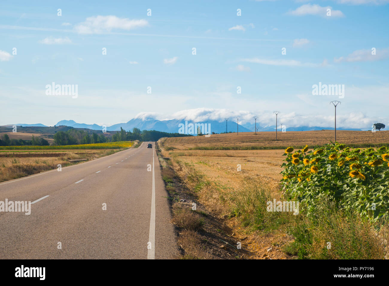 Byway and landscape. Palencia, Spain. Stock Photo