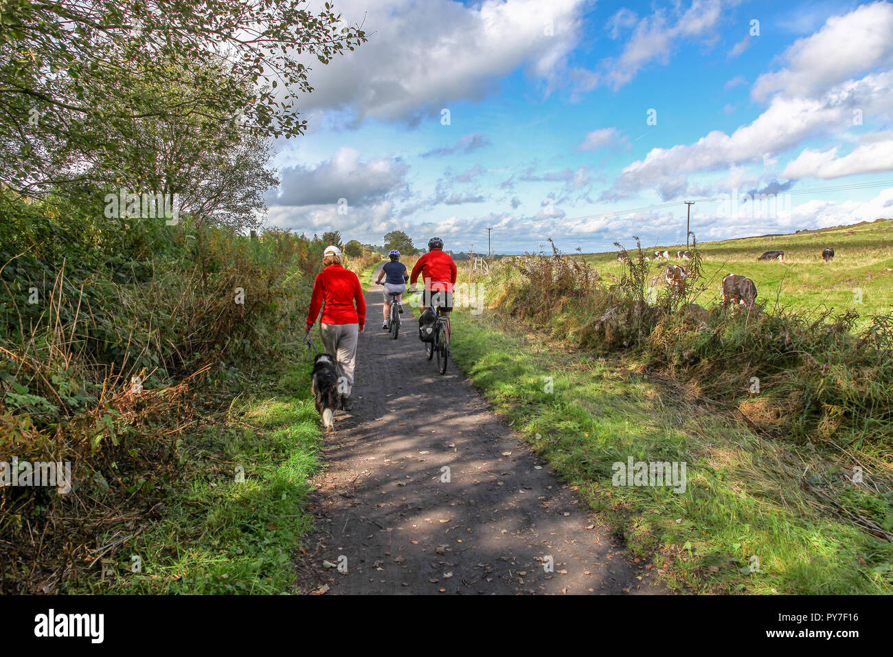 Cyclists and walkers on the High Peak Trail, Derbyshire, England, UK, Stock Photo