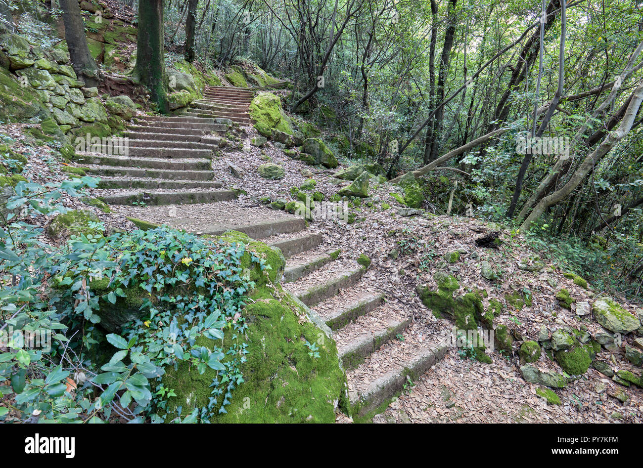 Long stairy way up to Moscenice, from Moscenicka Draga, Istria, Croatia - Stock Image