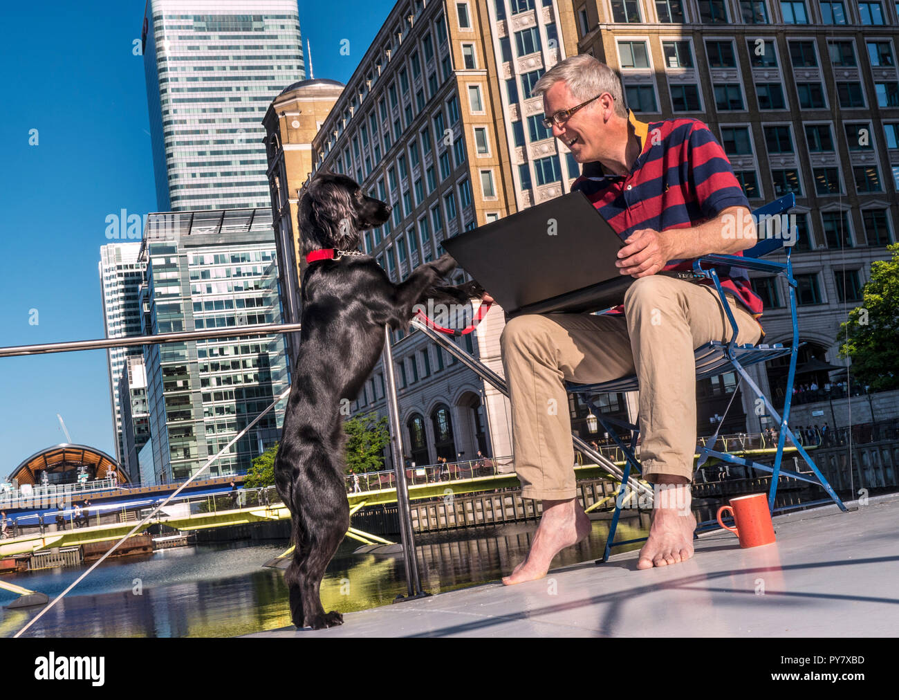 Self-employed businessman on deck of his river barge home office enjoying the sun & his dog, a contrast with big city buildings Canary Wharf London - Stock Image