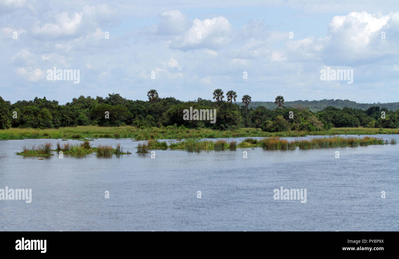 Looking out across the river Nile in Murchison Falls National Park, Uganda. - Stock Image
