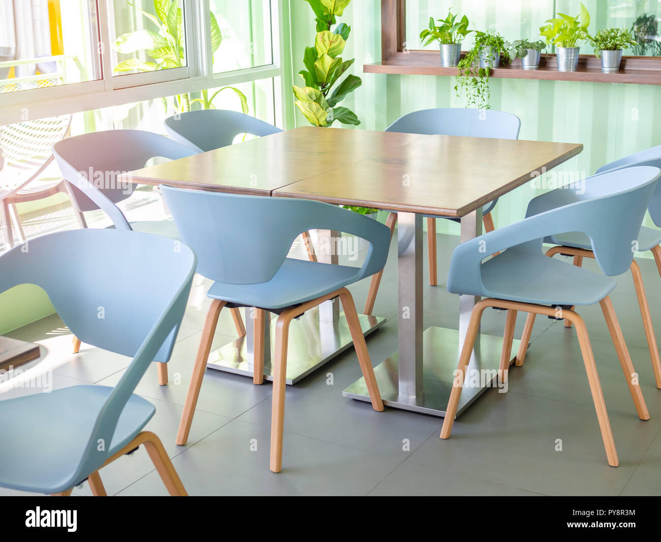 Modern blue chairs and wooden table near window glass and plants