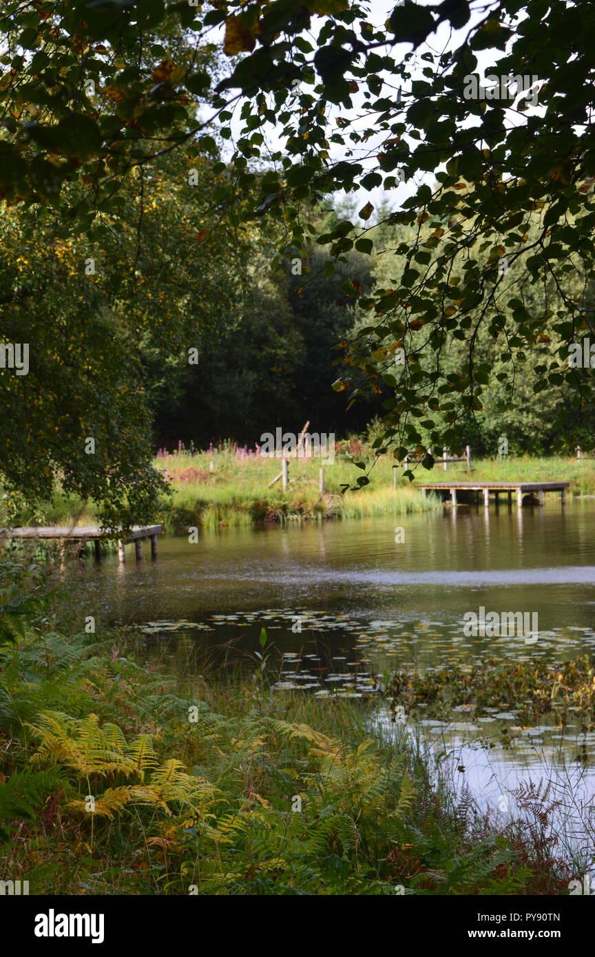 Fishing platforms at Llyngwyn Lake Rhayader September 2018 Stock Photo