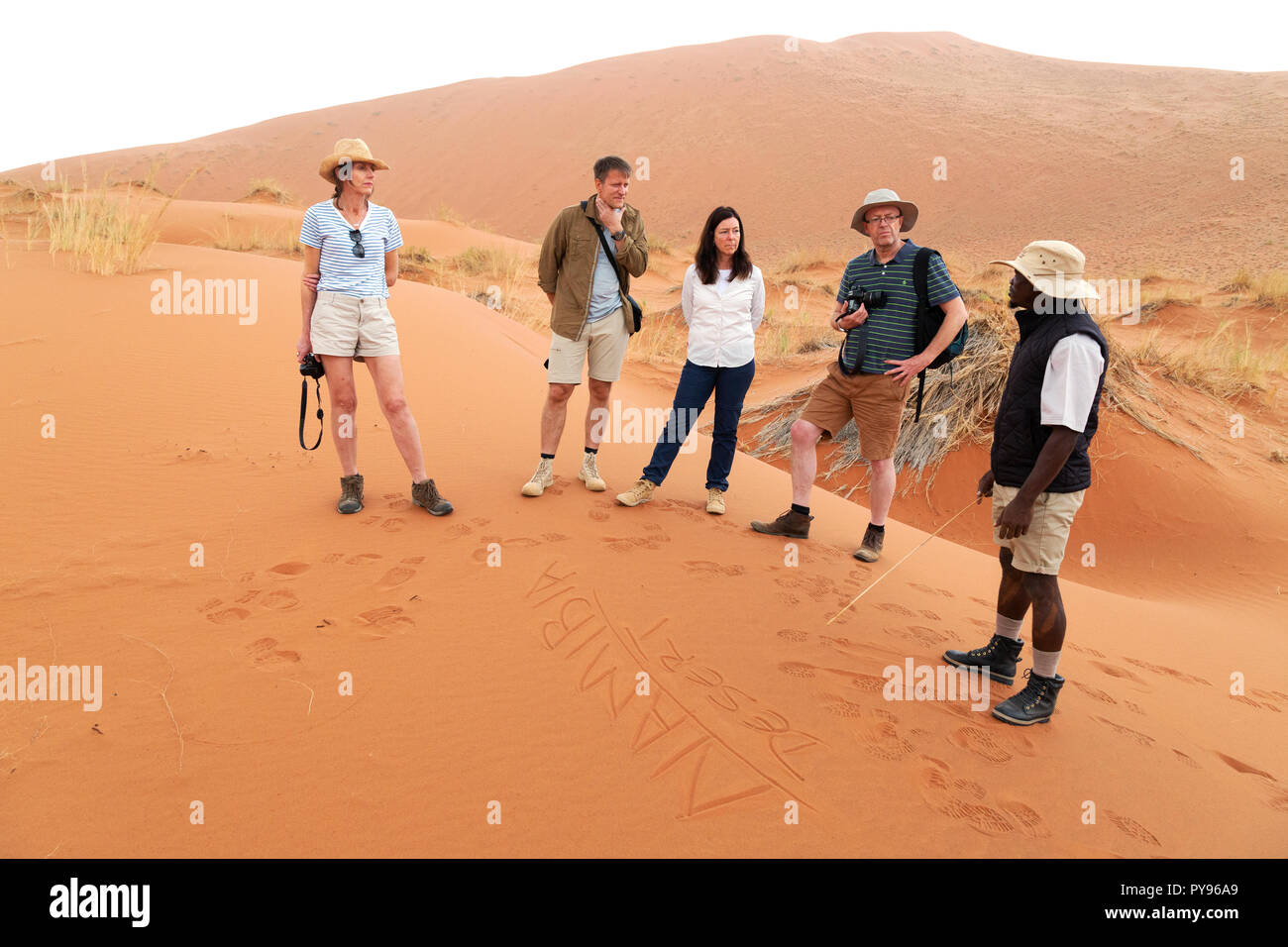 Namibia tour guide and tourist group on a guided tour of the Namibia desert; the Namib Naukluft national park, Namibia Africa - Stock Image